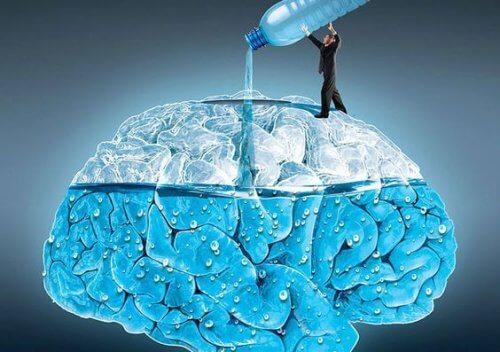 La thérapie de l'eau pour hydrater l'organisme