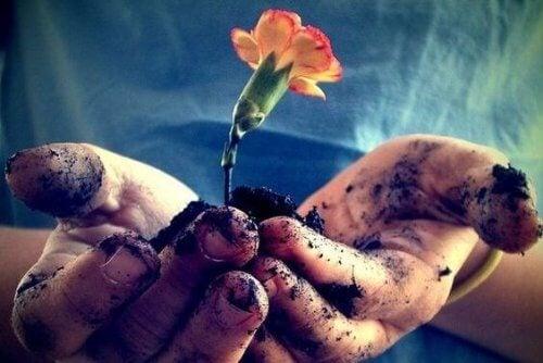 Prendre soin de l'amour à sa racine pour qu'il fleurisse chaque jour