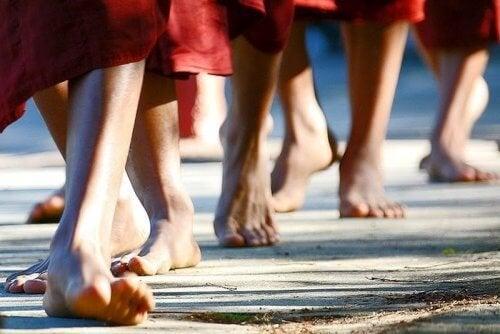 Apprenez à méditer en marchant et éliminez les émotions négatives