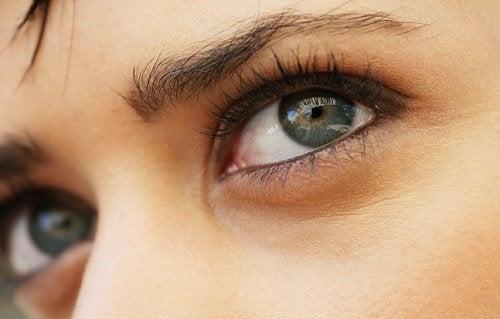 les yeux et la génétique