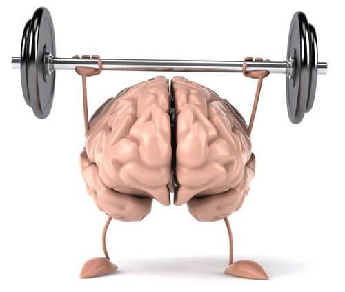 6 exercices pour maintenir votre cerveau en forme