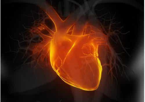 6 indices précoces d'insuffisance cardiaque
