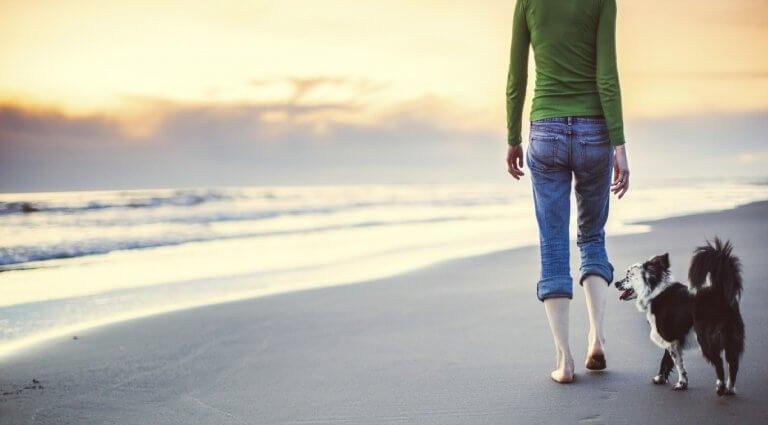 méditer ne marchant : une pratique très simple qu'il faut appliquer dans le quotidien