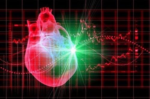 Schéma d'un coeur