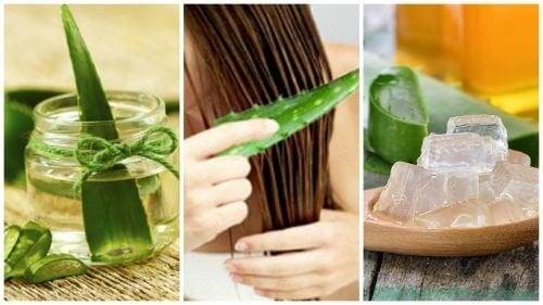 Traitements pour renforcer les cheveux à l'aloe vera