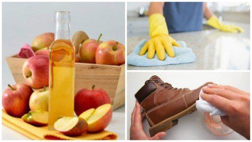 Les 7 meilleures utilisations domestiques du vinaigre de pomme