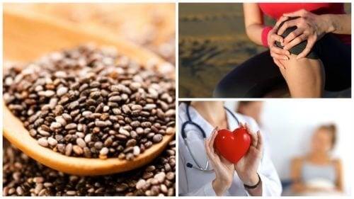 9 bienfaits de la consommation de graines de chia