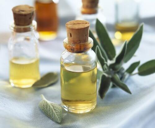 Remèdes pour soulager les symptômes de la ménopause : sauge