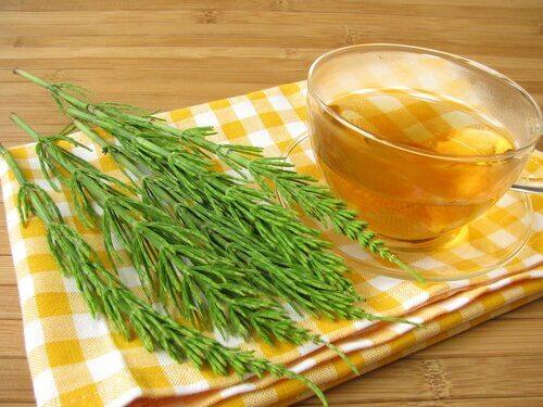 thé à la prêle pour lutter contre l'infection urinaire
