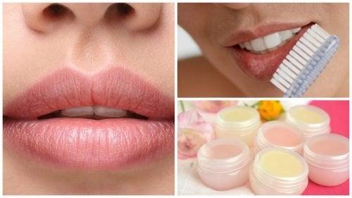 Vous voulez avoir de belles lèvres attirantes ? Ne manquez pas ces 7 conseils