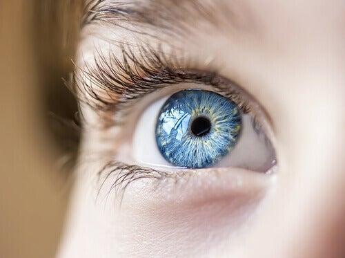 Aider à la santé visuelle.