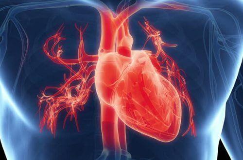 7 symptômes qui prouvent que votre cœur ne travaille pas comme il le devrait