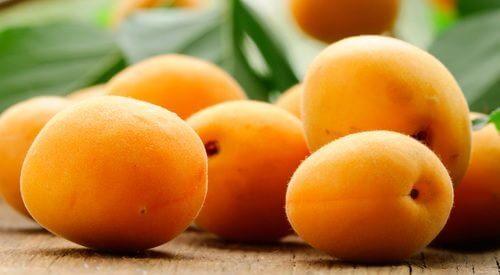 Découvrez les bienfaits incroyables de l'abricot