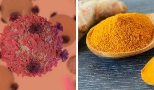 Les bienfaits du curcuma dans la lutte contre le cancer