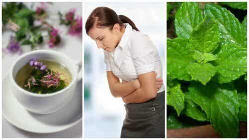 Soulagez le syndrome de l'intestin irritable avec ces 5 herbes curatives