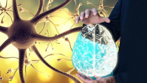 Comment « réveiller » le nerf vague pour améliorer notre bien-être