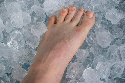 pied dans la glace