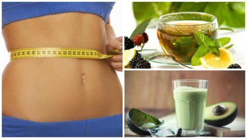4 manières de consommer du thé vert pour brûler des graisses et perdre du poids