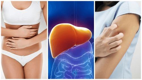 8 symptômes lorsque votre foie est chargé en toxines