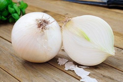 l'oignon : remède contre la toux