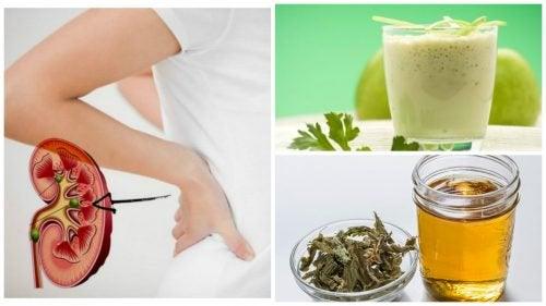 Combattre les calculs rénaux avec 5 remèdes naturels