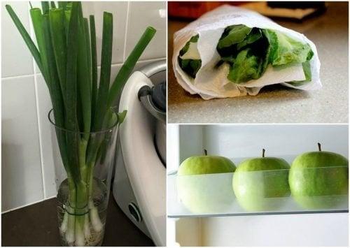9 astuces pour garder vos aliments frais plus longtemps
