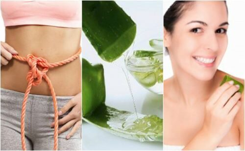 9 bienfaits médicinaux de l'aloe vera