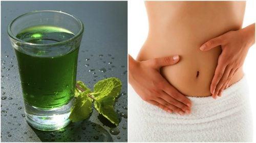 Comment préparer de l'eau verte pour désintoxiquer votre corps en 3 jours