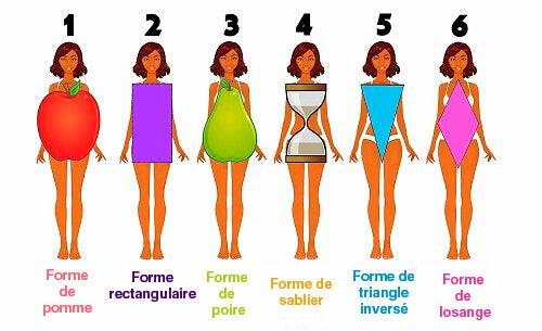 les différentes formes de corps