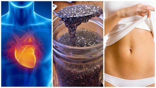 Les graines de chia ? 8 raisons d'en consommer !