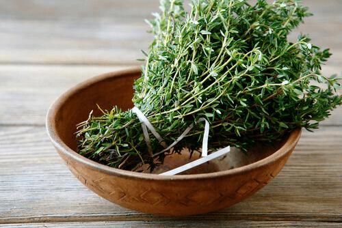 l'huile de thym est un des 4 remèdes maison pour éliminer les puces