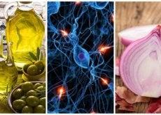 aliments pour prendre soin de son cerveau