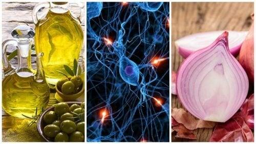 8 aliments pour prendre soin de son cerveau