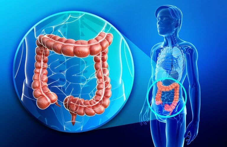 Améliorer les problèmes de thyroïde