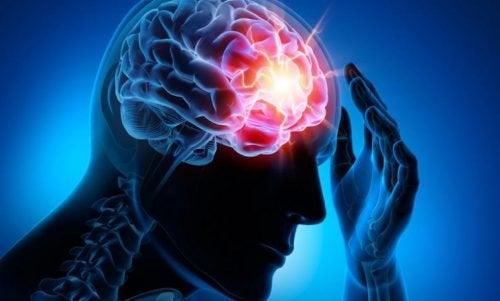Les 4 maladies vasculaires cérébrales les plus communes que vous devez connaître