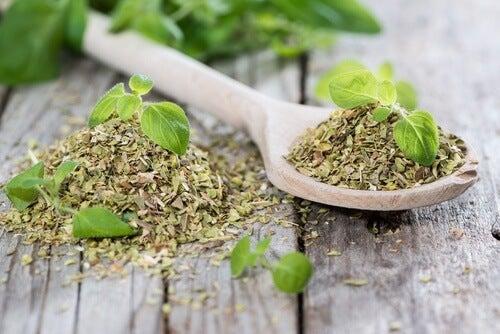 origan aliments pour prendre soin de ses reins et réduire sa consommation de sel