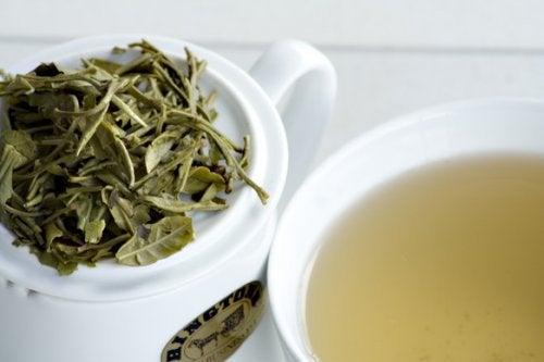 le thé blanc pour brûler les graisses