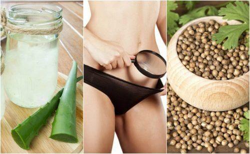 5 remèdes maison qui vous aident à contrôler l'excès de flux vaginal