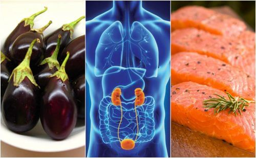 7 aliments qui vous aident à garder vos reins en bonne santé