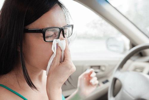 la cannelle aide à réduire les problèmes respiratoires