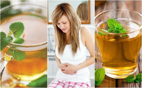 Les 5 meilleures infusions pour calmer le côlon irritable