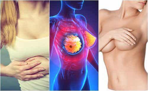 """Selon une étude, cet """"aliment"""" pourrait nous protéger face au cancer du sein"""