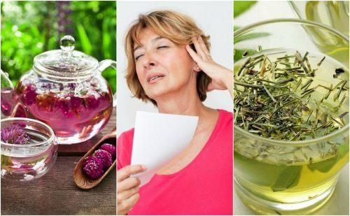 Réduisez les bouffées de chaleur de la ménopause grâce à 6 remèdes d'origine naturelle