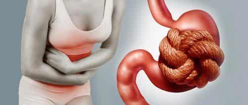 9 fruits idéaux pour combattre la constipation