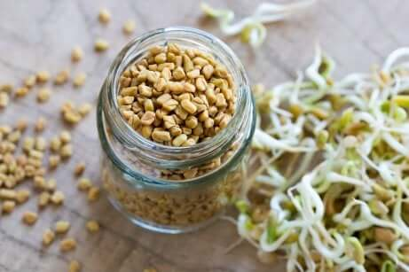 Les graines de fenugrec aident à contrôler l'excès de flux vaginal.
