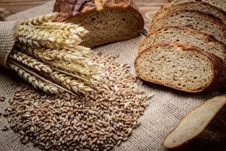 Le pain aux céréales aide à combattre l'anémie.