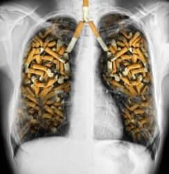 cigarettes dans des poumons