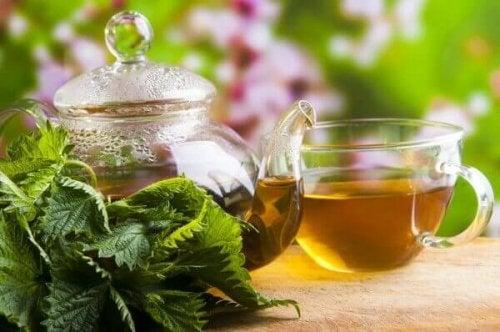 le thé aux orties aide à traiter la douleur des reins
