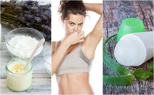 5 déodorants naturels pour éliminer les odeurs des aisselles