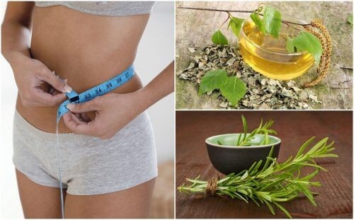 8 herbes bonnes pour la santé qui vous aideront à perdre du poids
